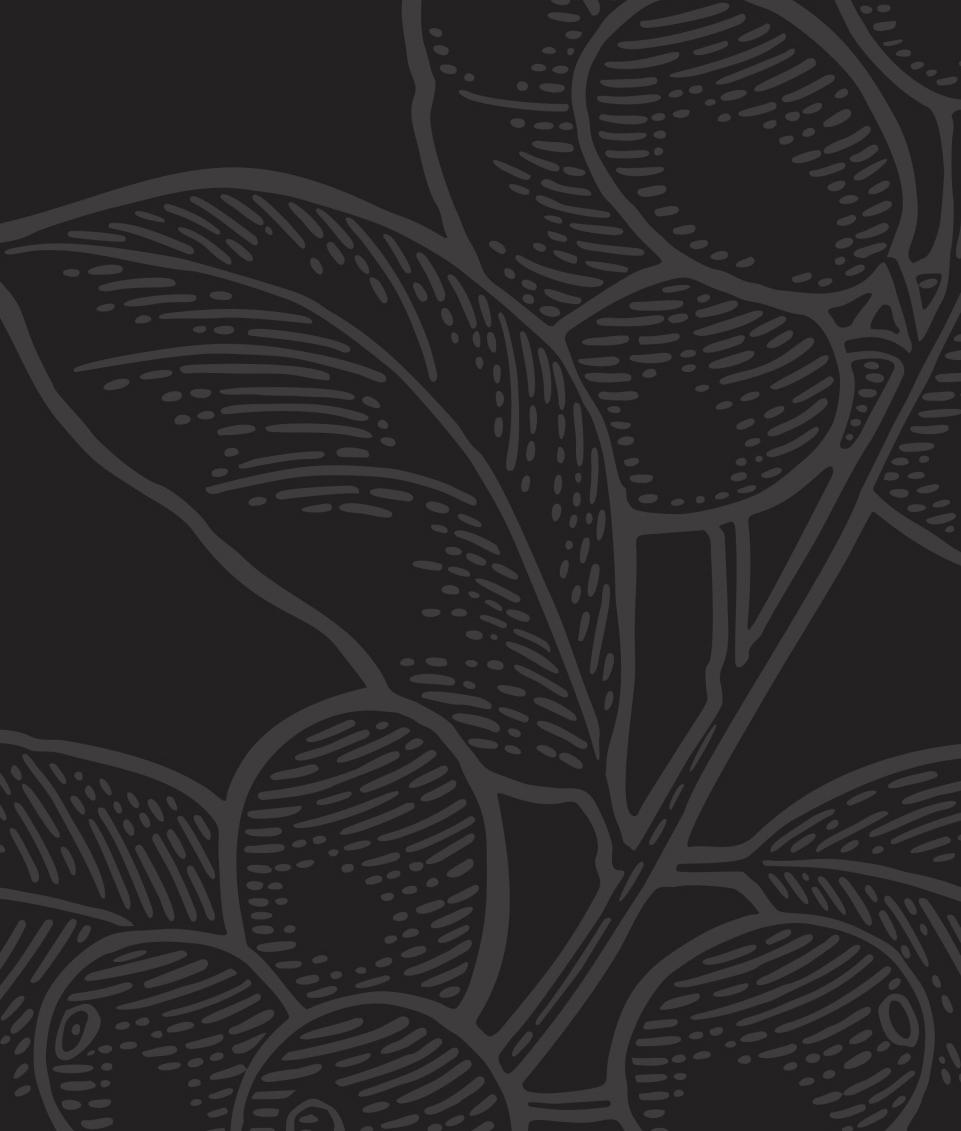 ilustração planta café